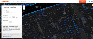 Strava Global Heatmap 2014-06-10 21-42-41